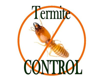 Pci Pest Control Industry Termite Control Services